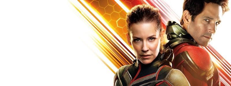 Эванджелин Лилли покинет MCU после «Человека-муравья 3»