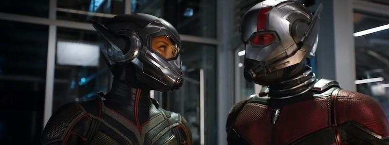 «Человек-муравей 3» покажет силы первой Осы