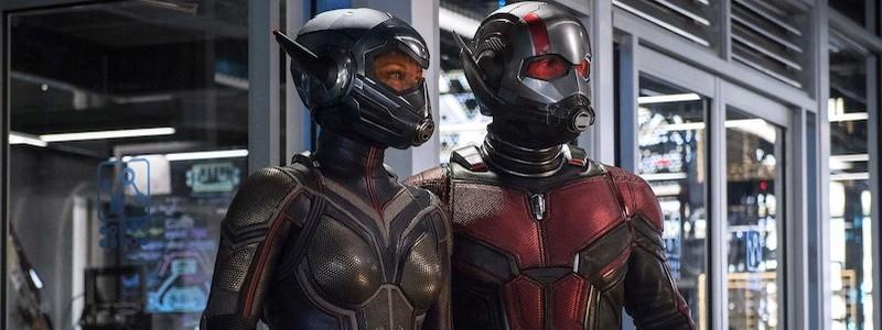 Подтверждена дата выхода фильма «Человек-муравей и Оса: Квантомания»