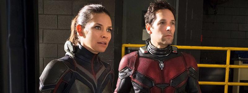 Знакомые персонажи Marvel появится в «Человеке-муравье 3»