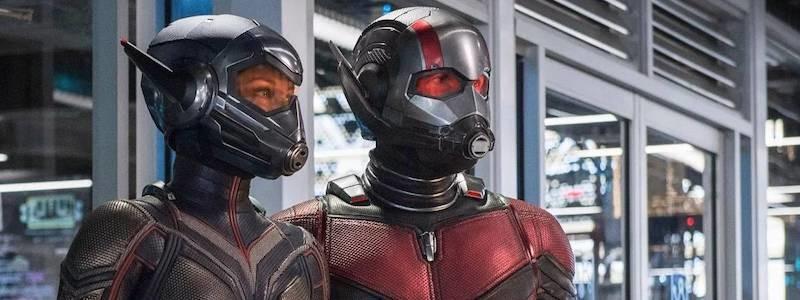 Утекла точная дата выхода фильма «Человек-муравей 3»