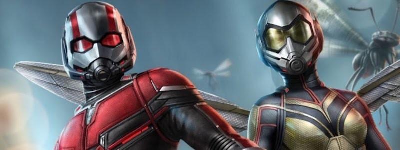 Почему Marvel отменили фильм «Человек-муравей 3»