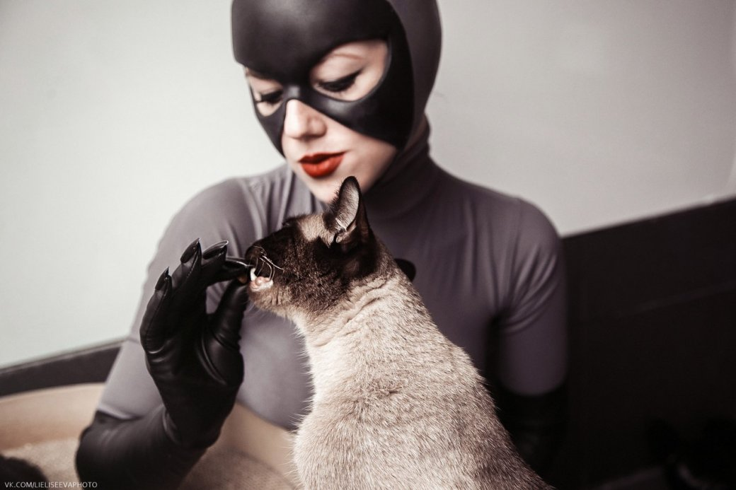 Косплей недели: Харли Квин, Женщина кошка и Йеннифэр