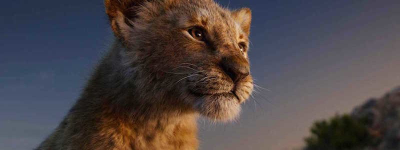 Честное мнение о ремейке «Король Лев». Как оно?